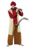 Snake Charmer Mens Costume