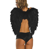 Black Feathered Wings